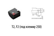 T2, F2 (под клемму 250)