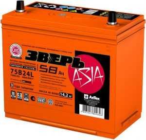 Аккумулятор Зверь Азия