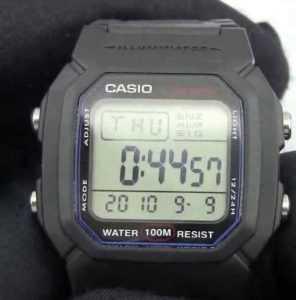 Casio W-800H