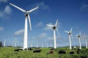 Поля ветрогенераторов