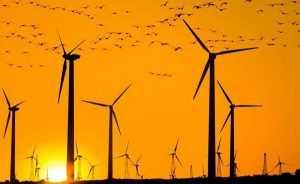 Больше всего ветроэнергетика развита в ЕС и США
