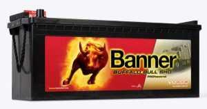 Buffalo Bull SHD PROfessional