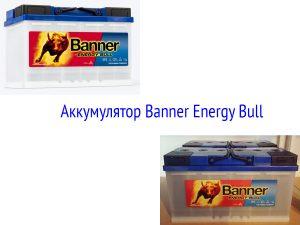 Аккумулятор Banner Energy Bull 90 Ач