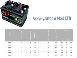 Аккумулятор Moll EFB