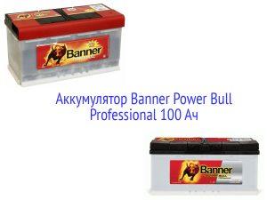 АКБ Banner Power Bull Professional 100 Ач