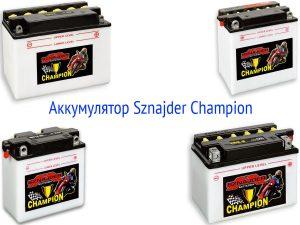 Аккумуляторная батарея Sznajder Champion