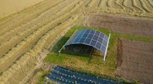 Смогут ли накормить мир микробы на солнечных батареях?
