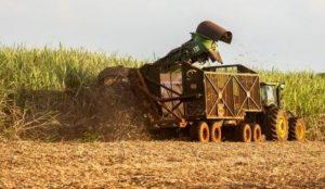 IFC инвестирует в увеличение производства этанола и биогаза в Бразилии
