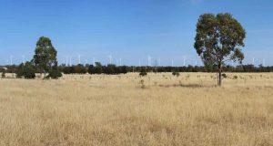 Компания Octopus Australia купит ветроэлектростанцию