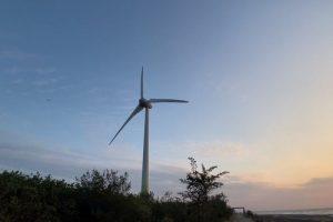 Рынок ветроэнергетической энергии в Индии готов к росту